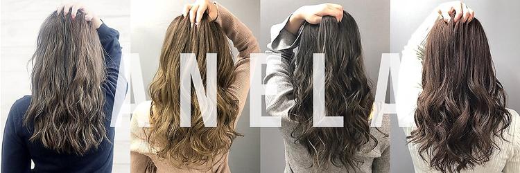 Hair Salon ANELA【新宿】 求人情報